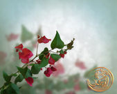 Floral Background Bougainvillea — Stock Photo