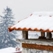 Roof over Bansko ski-center in Bulgaria - Stok fotoğraf