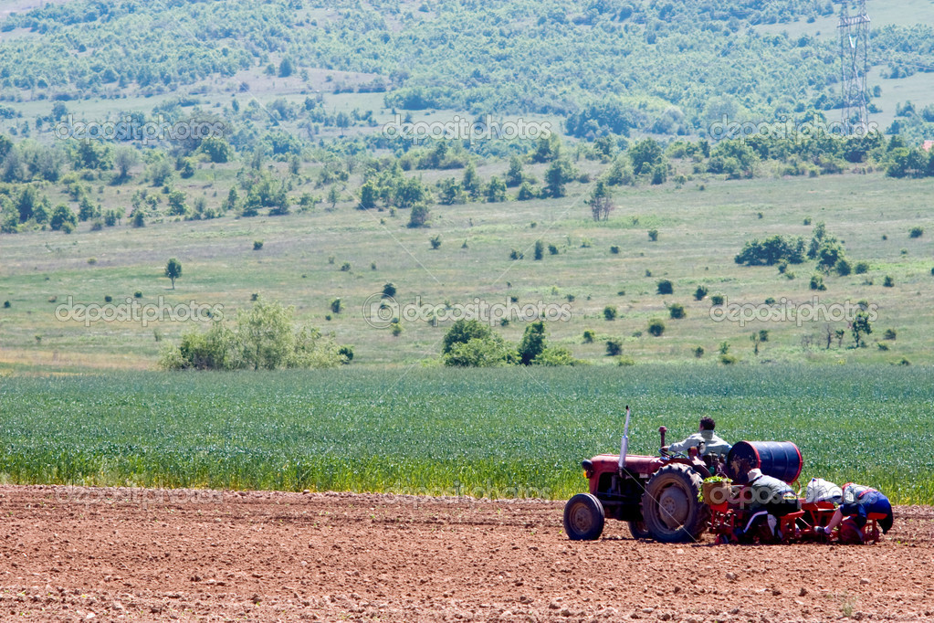 Agriculture workers working on a tractor in the field  Stock Photo #2104612