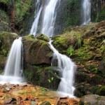 Waterfall — Stock Photo #2411242