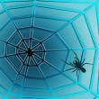 Spider Web — Stock Photo #2389587