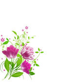 Spring flowers for Mothers day — Stock Photo