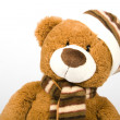 Teddy bear — Stock Photo #2071837