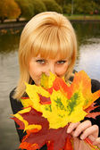 The lady autumn — Stock Photo