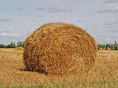 Autumn field and straw bale — Stock Photo