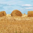 Autumn field and straw bale — Stock Photo #2532470