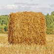 Autumn field and straw bale — Stock Photo #2640080