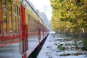 De rode trein op platform in de winter — Stockfoto