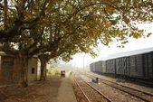 Station in autumn — Stock Photo