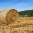 Bale of straw — Stock Photo #2100487