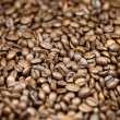 Coffee beans — Stock Photo #2102100