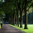 Jogger in a park - Stock Photo