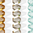 Dna — Stock Photo #2073346