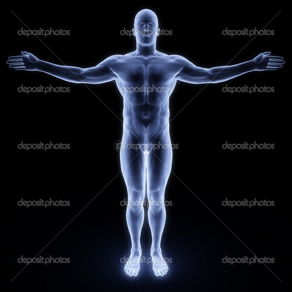 Human body by X-rays. isolated on black — Zdjęcie stockowe #2071275