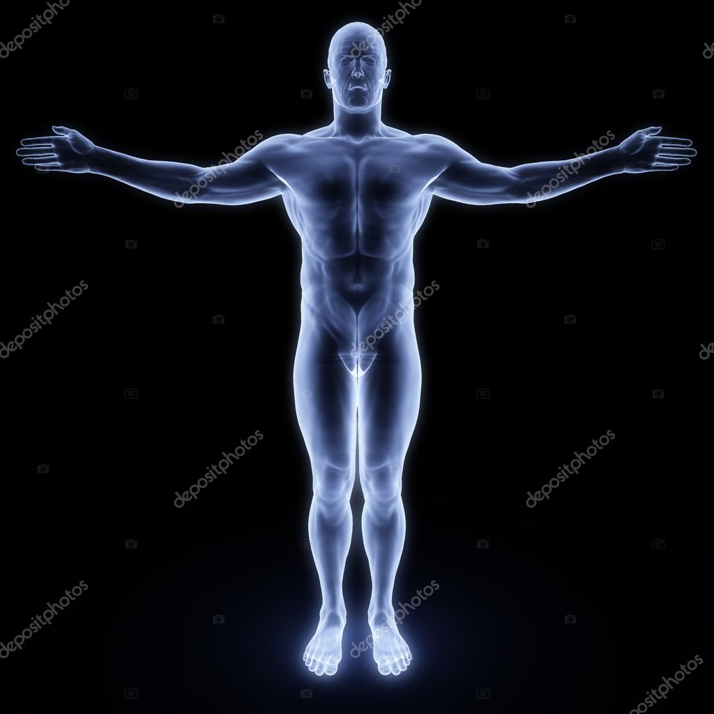 Human body by X-rays. isolated on black — Stockfoto #2071275