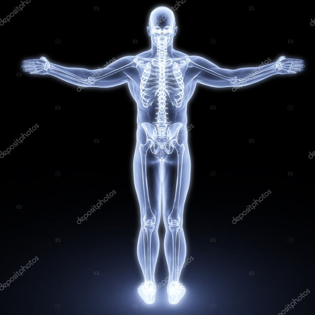 Human body by X-rays. 3d render — Stock Photo #2367018