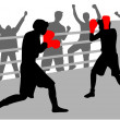 Fight in the ring — Stock Vector