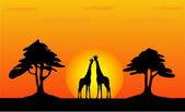 Zürafa - safari günbatımı — Stok Vektör