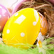 Easter Eggs — Stock Photo #2054452
