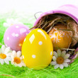 Easter Eggs on green — Stock Photo #2054463