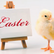 Stock Photo: Easter Chick and Table