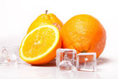 Icy Oranges! — Stock Photo