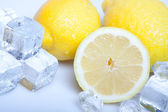 Icy lemons — Stock Photo