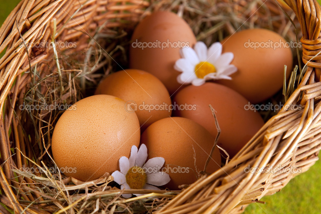 Eggs on green — Stock Photo #2063609