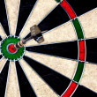 Dartboard Perfect Hit — Stock Photo