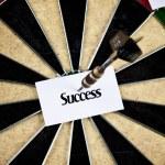 Dartboard Concept — Stock Photo #2430699