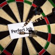 Perfect Job and Dart — Stock Photo