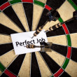 Stock Photo: Perfect Job and Dart