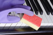 Rubber gloves and sponge — Stock Photo