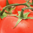 Stock Photo: VegetariMeals- tomato