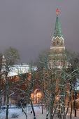 Winter- Moscow Kremlin — Stock Photo