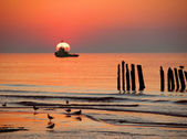 Baltic coast at sunset — Stock Photo