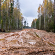 Dirty road in Latvia - Stock Photo