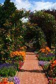Flower arch in garden, Graz — Stock Photo
