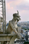 Gargoyle of Notre Dame de Paris — Stock Photo