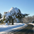 Winter road in countryside - Stock Photo