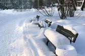Winter benches in center of Riga — Stock Photo