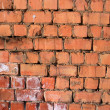 Red brick wall — Stock Photo #2594563