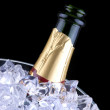 Champagne in Ice Bucket — Stock Photo