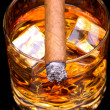 Stock Photo: Cigar on Whiskey