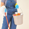 Woman with Cleaning Supplies — Stock Photo #2079815