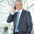 Smiling Businessman Talking on Cellphone — Stock Photo
