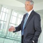stehende Geschäftsmann Hand schütteln — Stockfoto