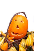 Pumpkin and Gourds in Basket — Stock Photo