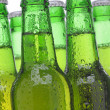 Group of Green Beer Bottles — Stock Photo