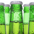 Five Green Beer Bottles — Stock Photo